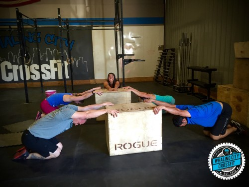 Gymnasty